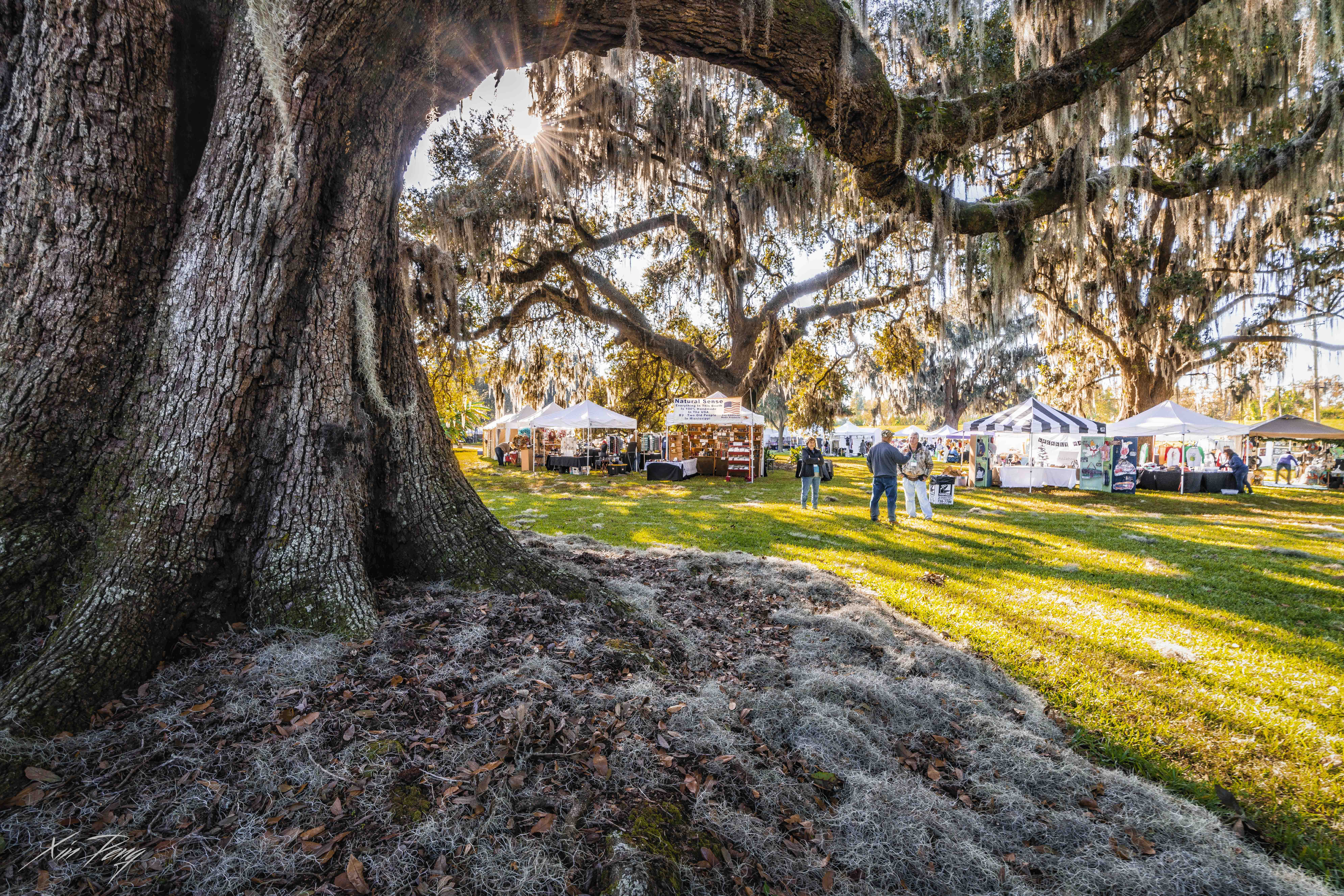 Fall Festivals 2020 Near Me.Fall Festival 2020 Destrehan Plantation